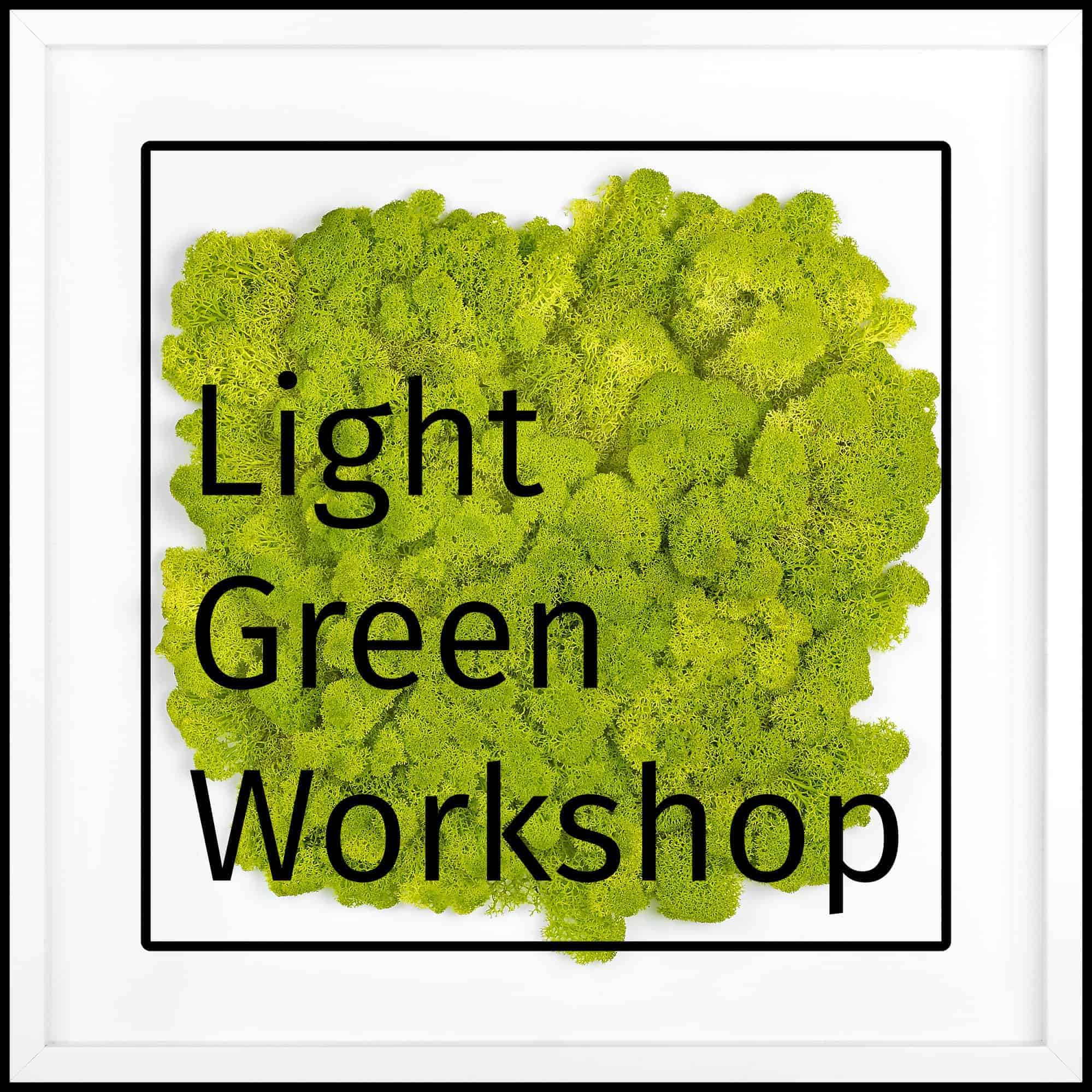 Light Green Workshop